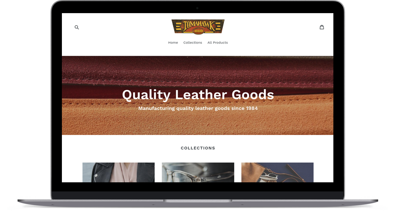 Custom Shopify website example